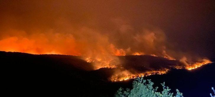 30 kilometre alanı kapladı! Bulgaristan'daki yangın Türkiye sınırına ulaştı