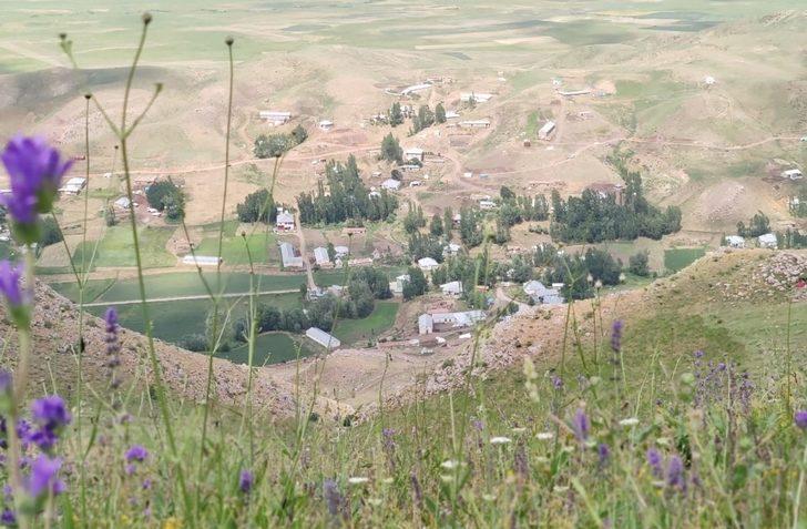 Yüksekova'da bir köy korona virüs bedeniyle karantinaya alındı