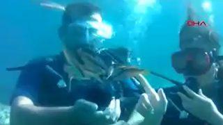 Su altında şaşırtan evlilik teklifi