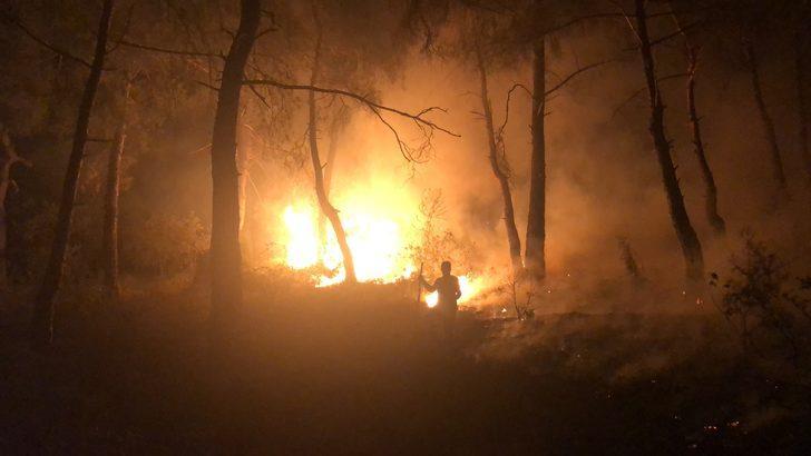 Bursa'da, ormanlık alanda çıkan yangın korkuttu