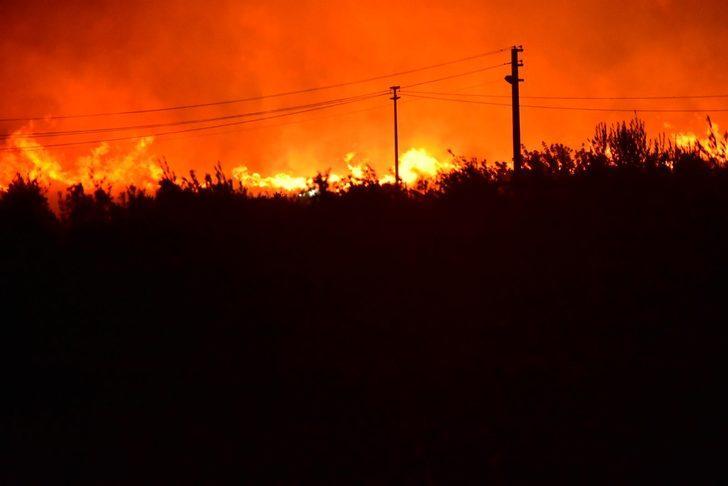 Çeşme'de otluk alanda yangın