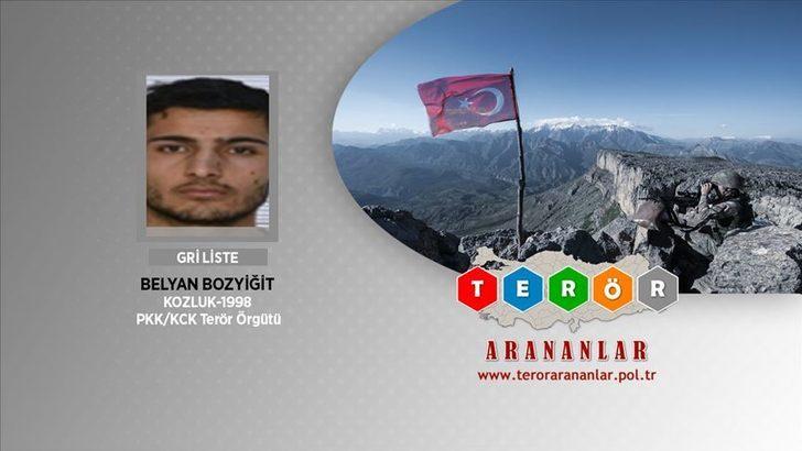 Van'da etkisiz hale getirilen terörist Gri Liste'de aranan Belyan Bozyiğit çıktı