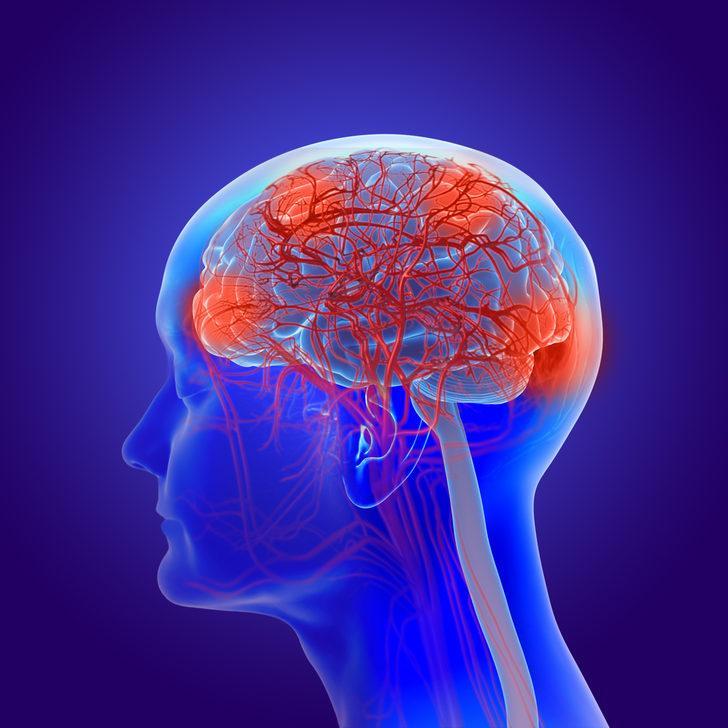 Beyin, hafıza gelişimine ne iyi gelir?