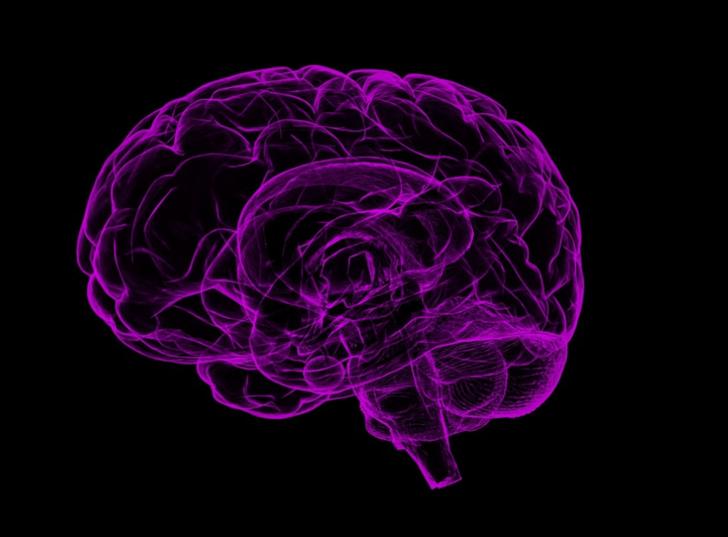 Sinir sistemine ne iyi gelir?