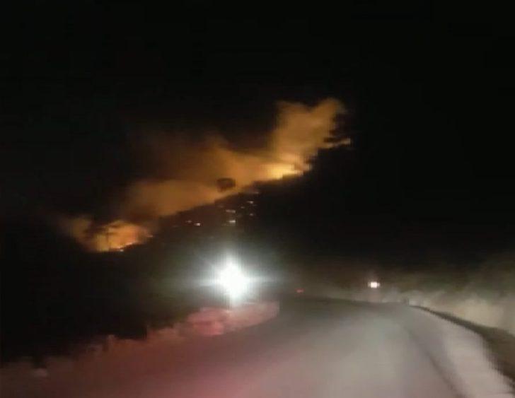 İzmir'in Menderes ilçesinde ormanlık alanda yangın
