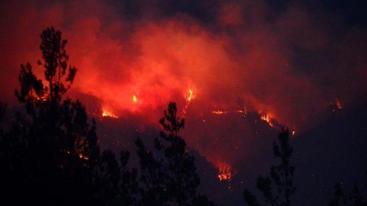 Adana'nın Kozan ilçesindeki orman yangınıyla ilgili 3 kişi yakalandı
