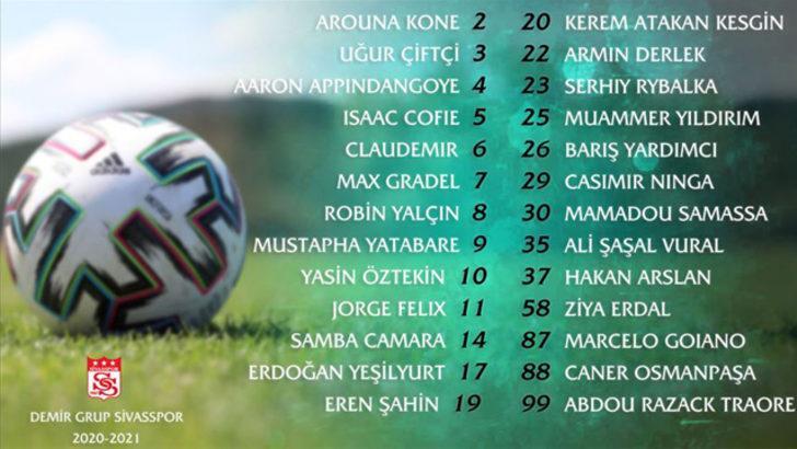 Demir Grup Sivasspor'da forma numaraları belli oldu