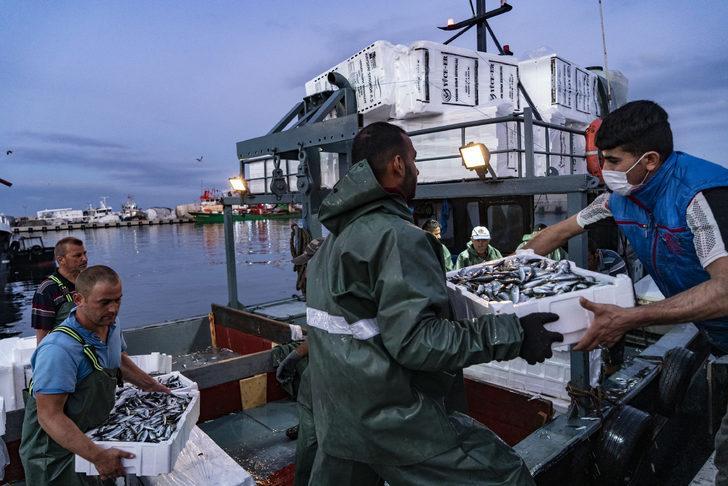 Eylül ayında hangi balık yenir? Hangi balık hangi ayda yenir? Eylül ayı hangi balık mevsimi?
