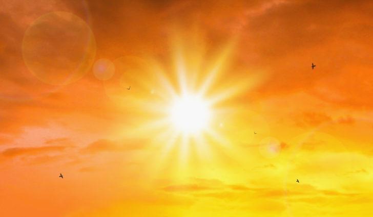 Güneşte temizlenebilen 4 mutfak ürünü
