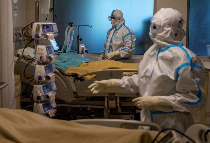Kötü haber: Hayvanlardan insanlara bulaşabilecek 850 bin virüs daha var