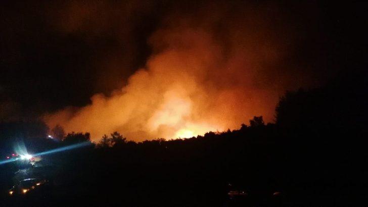 Antalya'da orman yangını! Ekipler alarma geçti