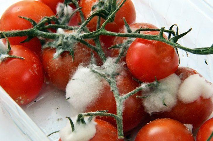 Çürüyen domatesleri sakın çöpe atmayın! Elektrik, maske, konserve ve salça...