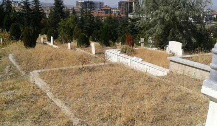 Mezar yerleri yüzde yüzden fazla kazandırdı