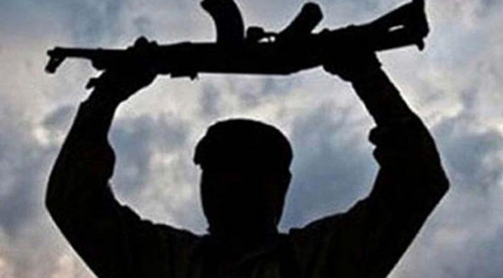 İçişleri Bakanlığı açıkladı: Mardin'de 2 terörist teslim oldu