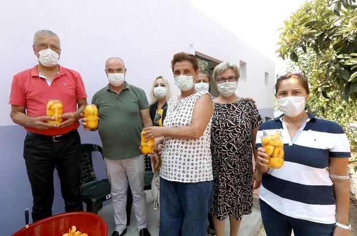 Başkan Tarhan şeftali soydu, komposto yaptı