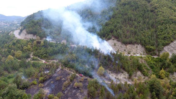 Sinop'ta otları temizlemek isteyen şahıs 20 hektarlık ormanı yaktı
