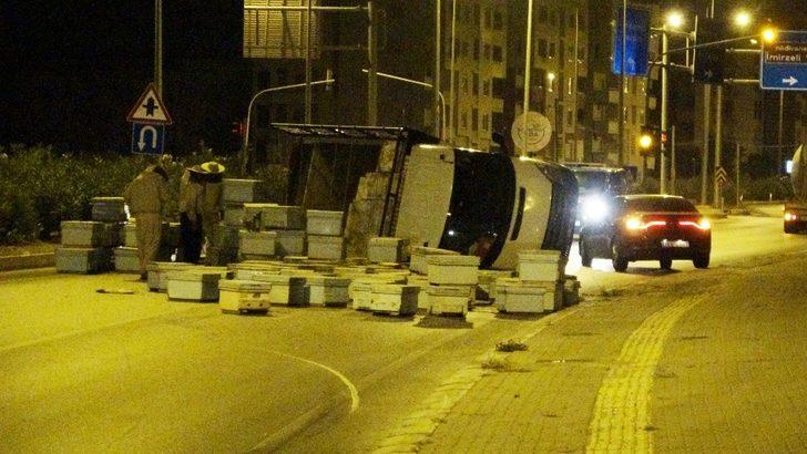 Mersin'de kovanlar ve kızgın arılar yolu trafiğe kapadı