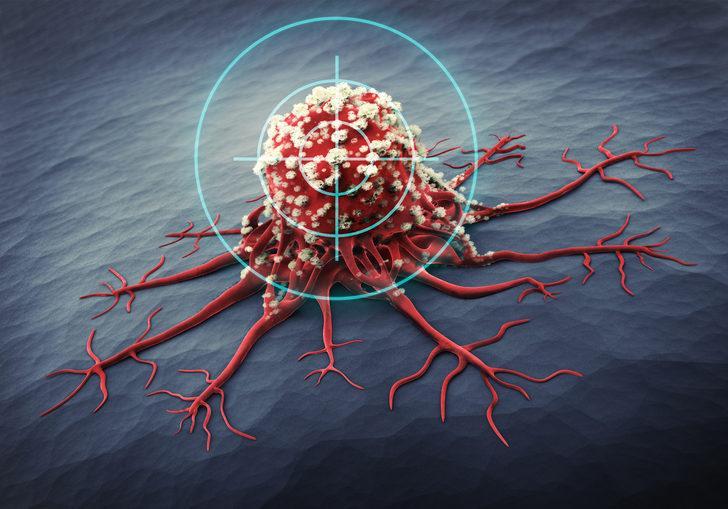 Daha güçlü bağışıklık sistemine sahip olmak için 6 öneri