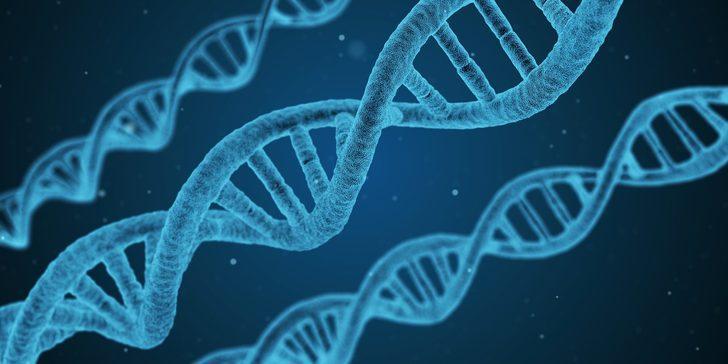 Bilim adamları duyurdu: Ağır koronavirüs vakalarından Neandertal genleri sorumlu olabilir