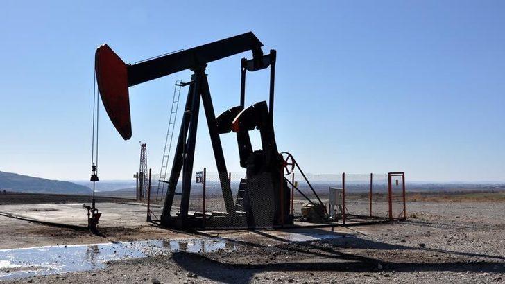 Türkiye Petrolleri Anonim Ortaklığına (TP) 4 petrol arama ruhsatı verildi.