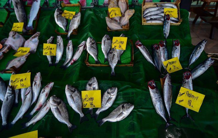 Havaların soğumaması balık fiyatlarını yükseltiyor!  Palamudun tanesi 15 lira