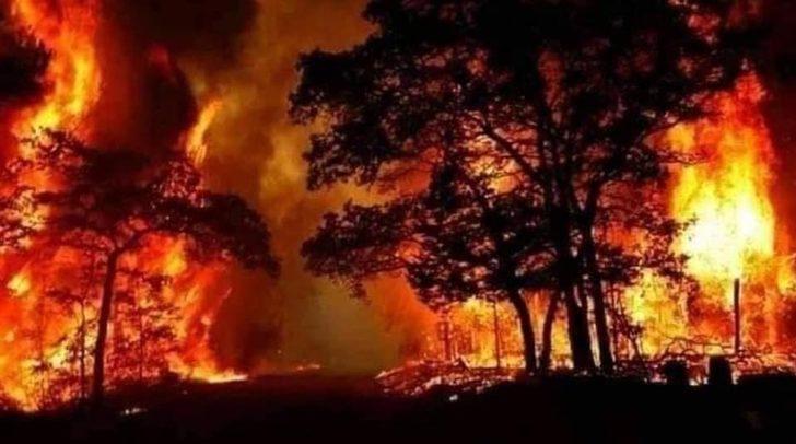 Suriye'deki orman yangınında ölü sayısı 3'e yükseldi