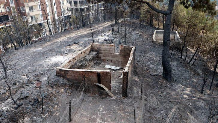 Hatay, Kahramanmaraş ve Trabzon'daki yangınlarda ormanlık alanlar ve yerleşim yerleri zarar gördü