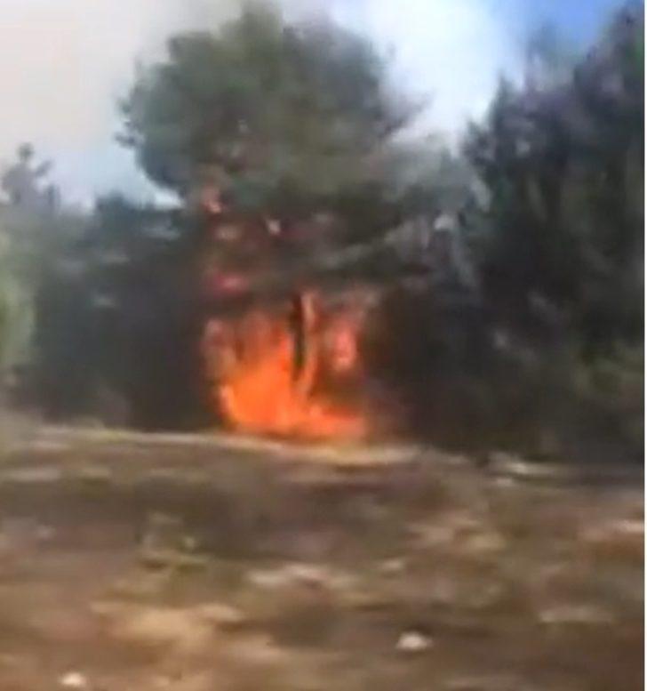 Ordu'da korkutan orman yangını