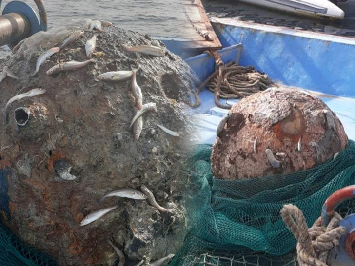 İstanbul Boğazı'nda balıkçıların ağına takıldı! Paniğe yol açtı
