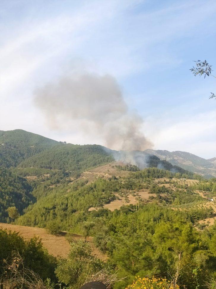 GÜNCELLEME - Adana'da çıkan orman yangınına müdahale ediliyor