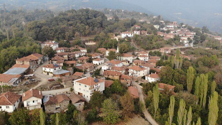 Bursa'daki bu köye koronavirüs uğramadı!