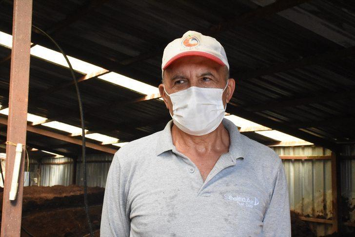 Emekli astsubay memleketine dönüp solucan gübresi üreticisi oldu
