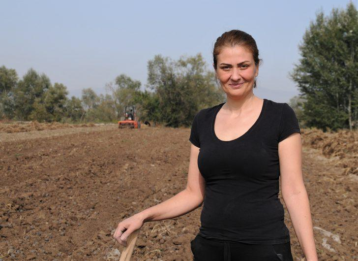 Türkiye'nin tek kadın mor patates üreticilerinin hasat sevinci! Mor patatesin kilosu 60 lira