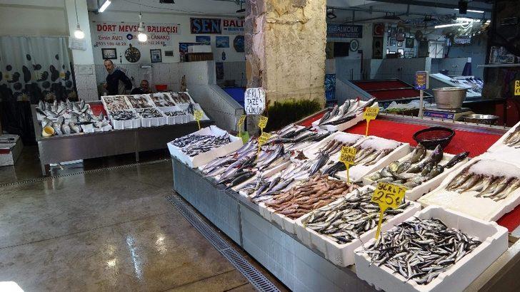 Balık fiyatlarının ateşi düşmedi! Mezgitin kilosu 100 lira