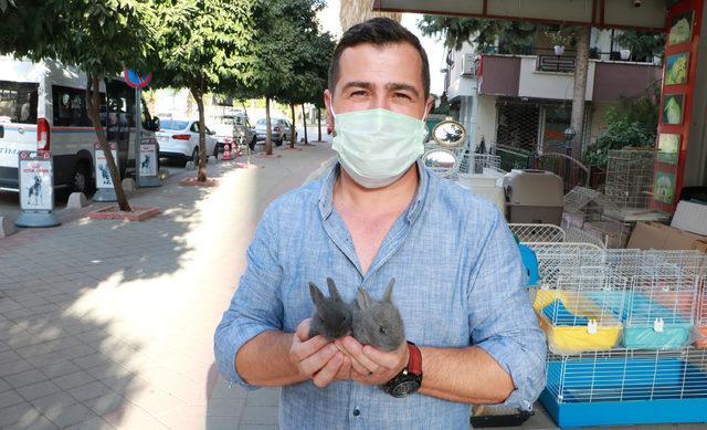 internetten-hayvan-satanlara-pet-marketlerden-tepki-yilan-baykus-akrep-bile-satiyorlar_5239_dhaphoto4