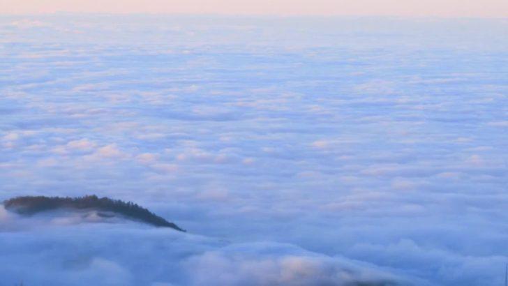 Bulutlara komşu yayla: Kardüz