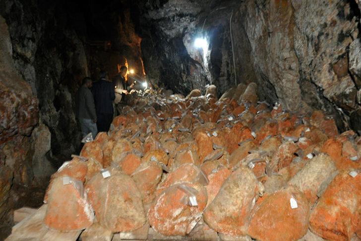 Fransızların rokfor peynirine rakip oldu! 5 ay mağarada saklanıyor ve...