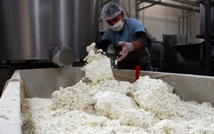 Hatay künefesinde kullanılan tuzsuz peynir Orta Doğu ülkelerine ihraç ediliyor