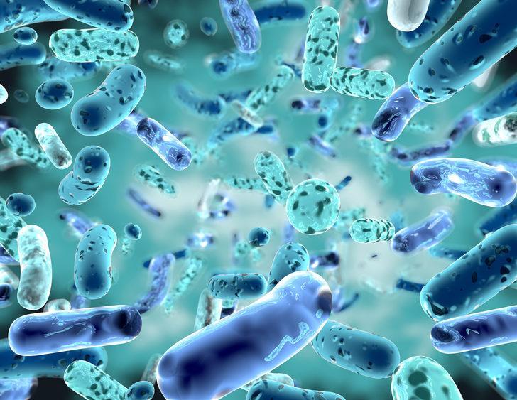 Glutatyon ve bağışıklık sistemi etkisi ile ilgili bilimsel veriler
