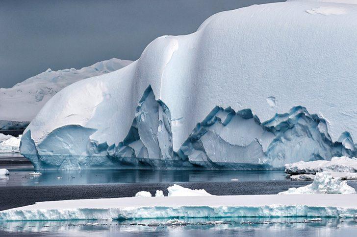 Antartika yeşerirken