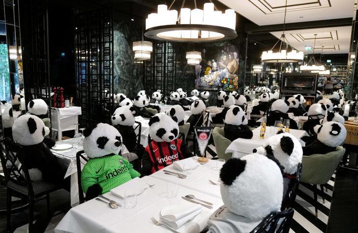 Restoranında oyuncak pandaları müşteri gibi ağırladı