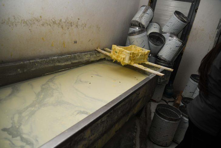 Kayseri'de sahte peynir üretimi yapan işletmeye 55 bin TL ceza