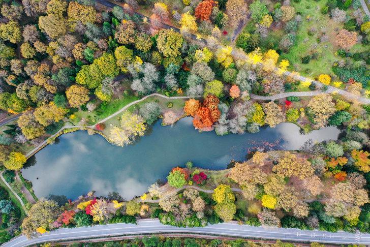 Atatürk Arboretumu nerede? Atatürk Arboretumu'na nasıl gidilir? Atatürk Arboretumu giriş ücreti 2020