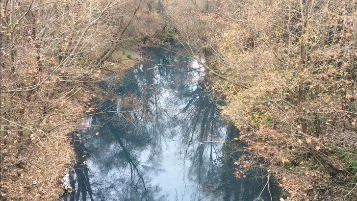 Bartın Irmağı'nda tedirgin eden görüntü! Rengi maviye döndü