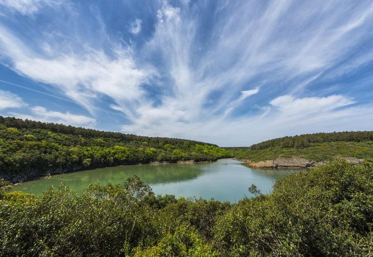 Hamsilos Tabiat Parkı - Hamsilos Tabiat Parkı giriş ücreti - Hamsilos Koyu nerede? Hamsilos Koyu kamp