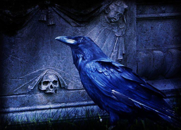 Rüyada kardeşinin öldüğünü görmek ne demek, ne anlama gelir?
