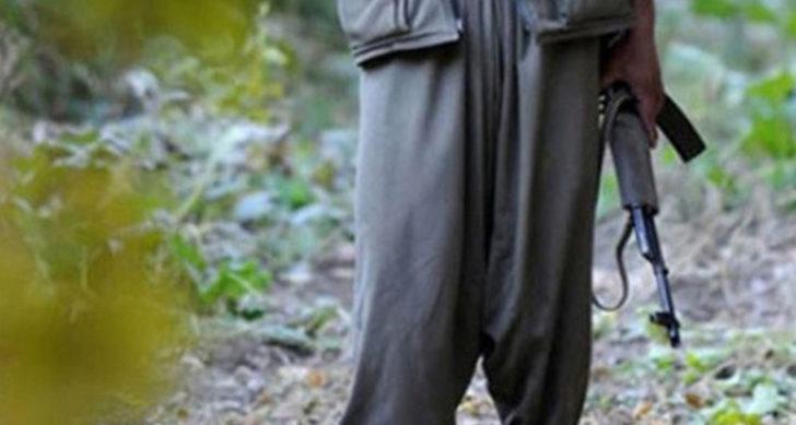 İçişleri Bakanlığı: 2 PKK/KCK terör örgütü mensubu teslim oldu