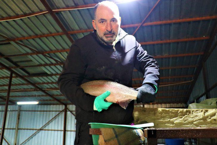 Bozkırda üretiyor, dünyaya satıyor! 39 milyon alabalık yumurtası işlendikten sonra çeşitli Avrupa ülkelerine gönderiliyor