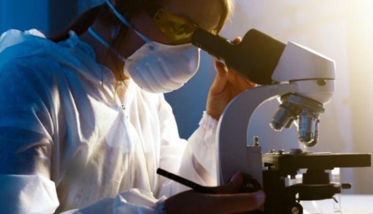Amilaz enzimi nedir ve görevleri nelerdir?