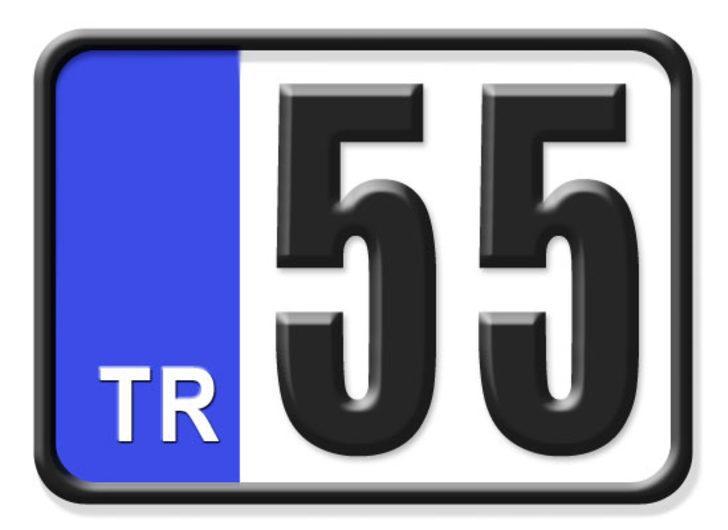 55 nerenin plakası? Hangi ilin araç plaka kodu 55?